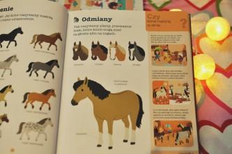 encyklopedia(3)