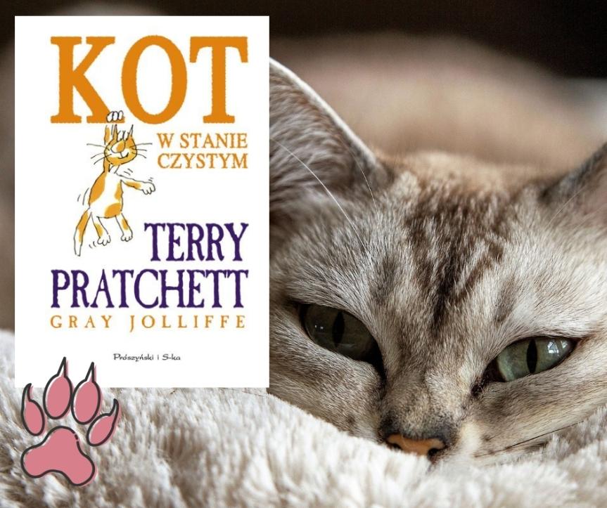 Kot w stanie czystym. – Książka nie dladzieci.